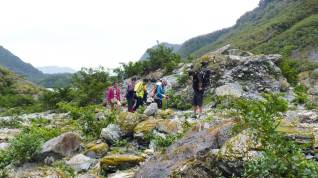 Glacier Valley Eco Tours - rough terrain at Franz Josef Glacier